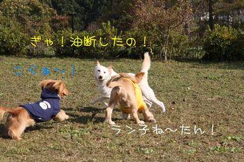 IMG_0147.JPG