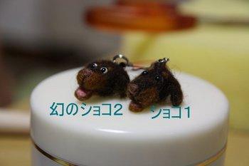 IMG_0303-1.JPG